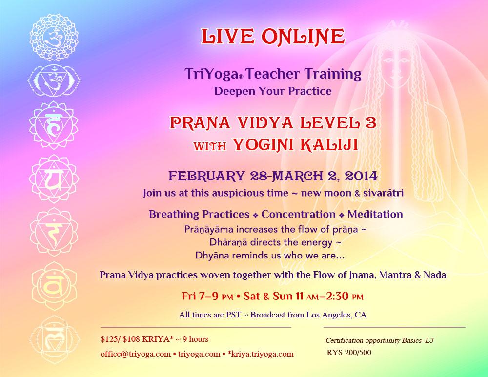 TriYoga Live Online Teacher Training Prana Vidya Level 3 with Yogini