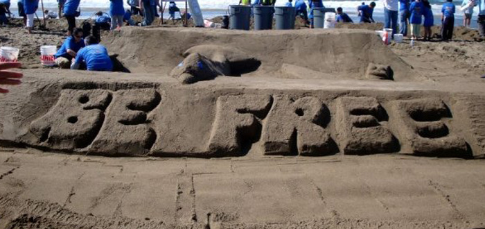 Government Shutdown Puts Ocean Beach Sandcastle Contest On Hold