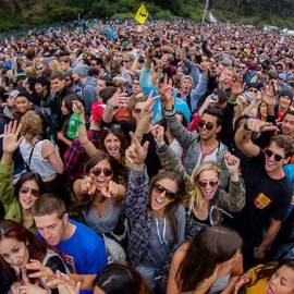 Outside Lands Festival Survival Guide
