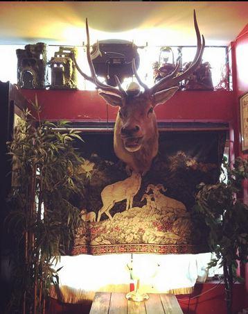 buckshotbar rrachowell