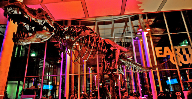 Top 5 of 2015: California Academy of Sciences NightLife Series