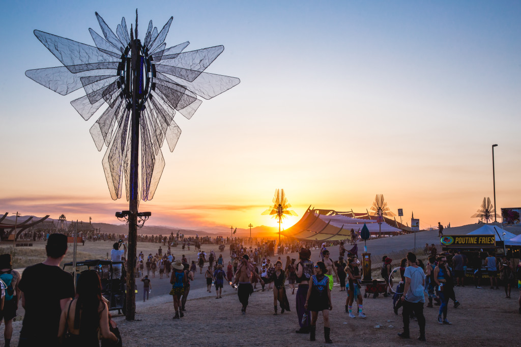 Lightning in a Bottle: A Festival for the Mind, Body and Soul - Introduction