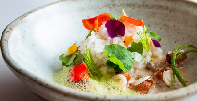 100 Chefs Collaborate for New SFMOMA Restaurant, Opens Next Week