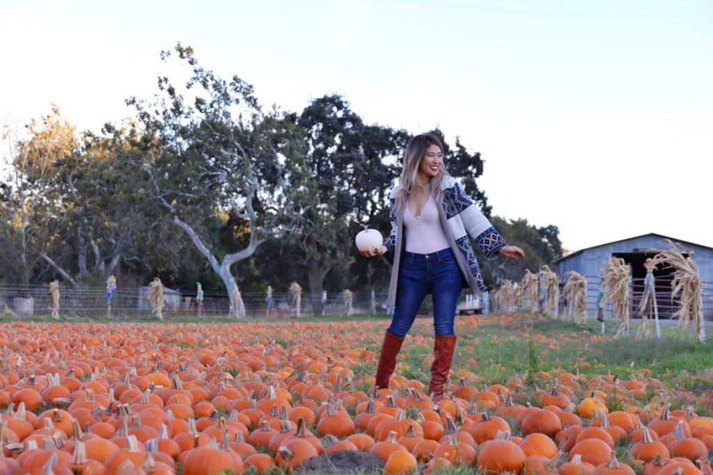 allychen-pumpkinpatch