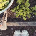 Image via Garden for the Environment