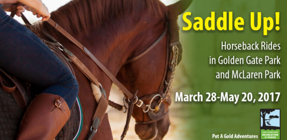 horse-promo-web-2-586x286