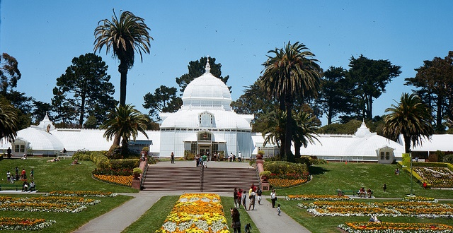 Conservatory of Flowers Teams Up with Local Organizations: 9 Free Activities for Nature Lovers