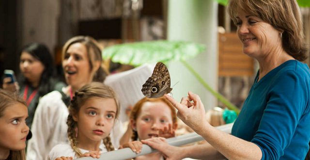 All SF Elementary School Kids Get A Free Annual Field Trip to Cal Academy of Sciences