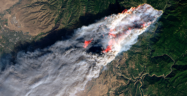 A New Normal: How to Help, Stories of the California Wildfires, Useful Links