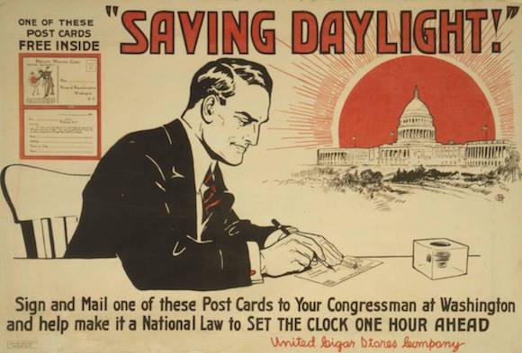 saving-daylight-bay-curious