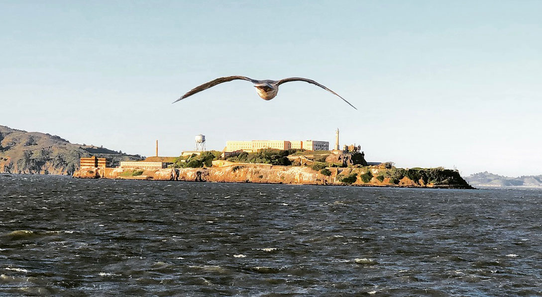 Alcatraz Is Closed National Park Service Closes Most Sf Bay Area